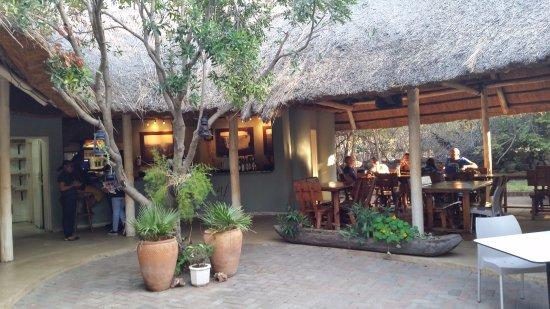 The Rainforest Cafe: widok na sale konsumocyjną