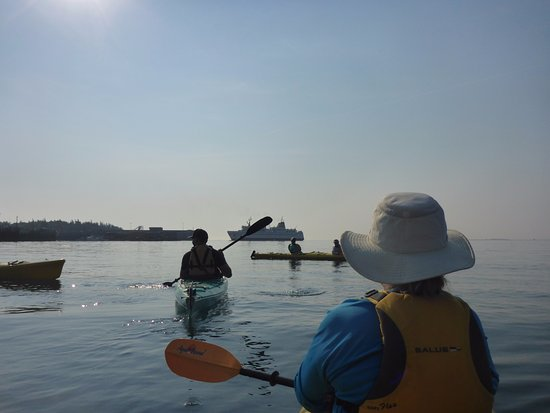 Grand Manan, Canadá: Leaving the harbour for a paddle around Swallowtail to Whale Cove