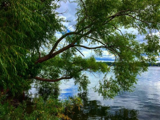 Lake Harriet: photo0.jpg