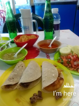 Los Algodones, Meksiko: These are the great tacos(shrimp,goat & cabeza) before I added all the condiments to them
