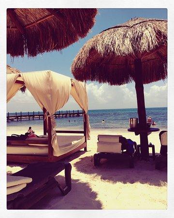 Ocean Maya Royale: Privilege jr honeymoon suite. We loved our room and loved the privilege private beach area.