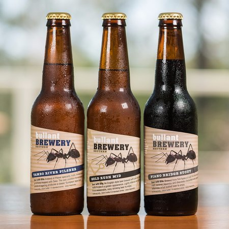 Gipsy Point, Australia: Boutique beer in the bar