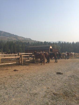 A-OK Corral / Horse Creek Ranch 이미지