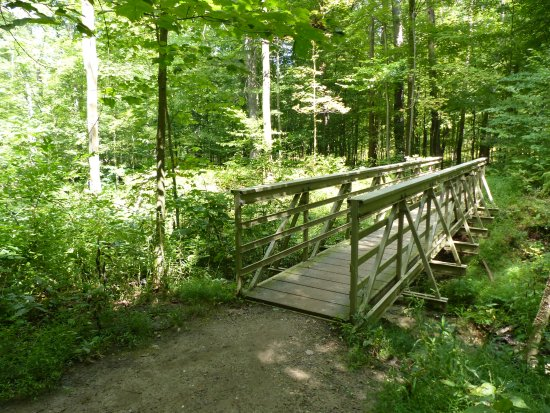 Brecksville, OH: BW Falls trail, one of many small bridges