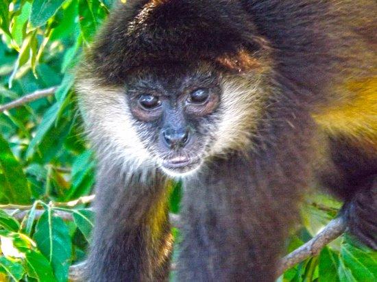 Granada Department, Nicaragua: Granada Islets.