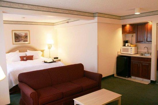 Martinsville, VA: King Suite Room
