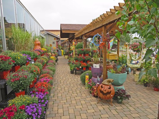 New Glarus, WI: Beautiful floral displays