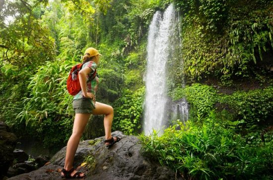 Rain Forest Nature Walk Expedition...