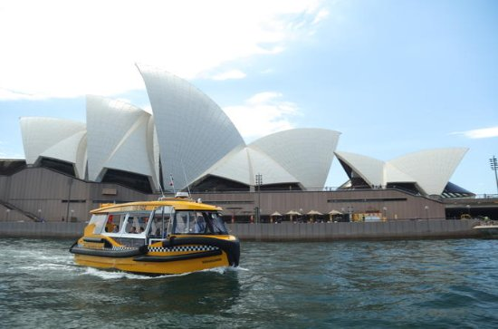 Private Sydney Harbour Cruise by