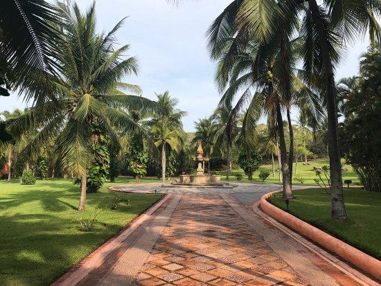 Quemaro, Meksika: Las Alamandas es sin duda un paraíso y el lugar ideal para vacacionar