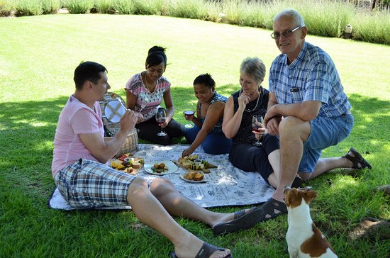 Oudtshoorn, Νότια Αφρική: For small groups we do informal cheese tastings