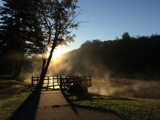 Allegany State Park: photo1.jpg