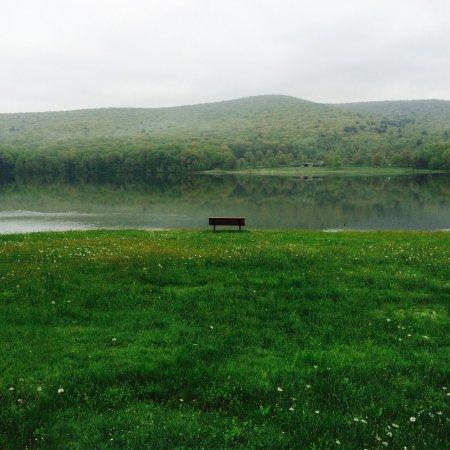 Allegany State Park: photo2.jpg