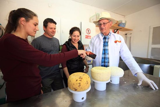 Oudtshoorn, South Africa: Visit the factory and see how we make cheese