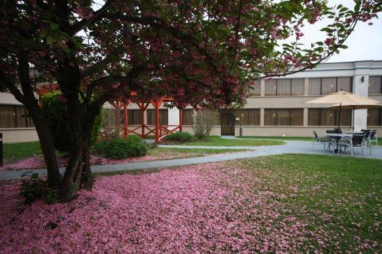 Hazlet, NJ: Courtyard