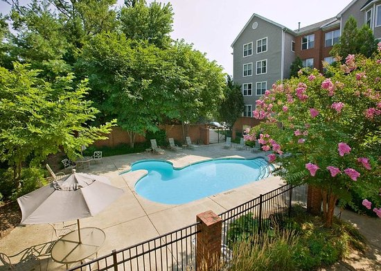 Homewood Suites Alexandria: Duck Shaped Pool