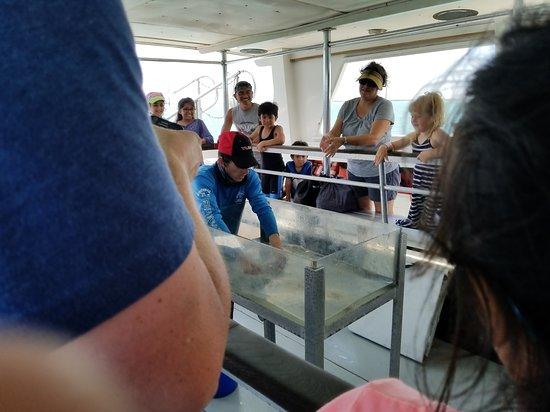 Breakaway Cruises: 20170818_115858_large.jpg