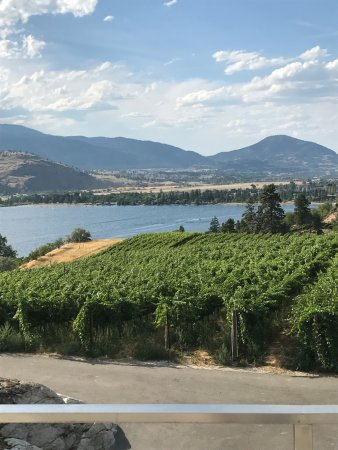 View from Pentage Vineyard - Premium Winery in Penticton, BC