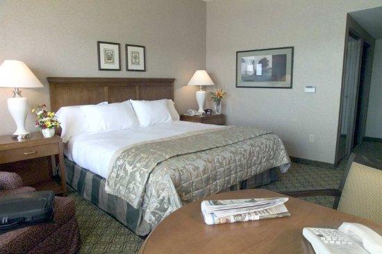 Bay City, MI: King Guestroom