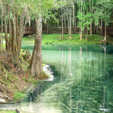 Lake City, FL: Ichetucknee Springs State Park