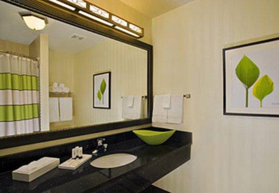 Fairfield Inn & Suites Hartford Airport: Guest Bathroom