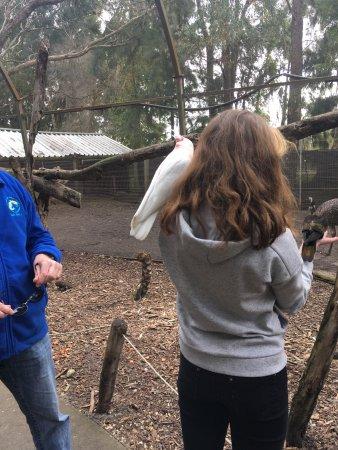 Peel Zoo: photo1.jpg