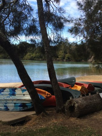 Boambee Bay Resort: Boambee Creek - the canoes are for resort guests to use.