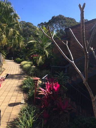 Boambee Bay Resort: Beautiful gardens
