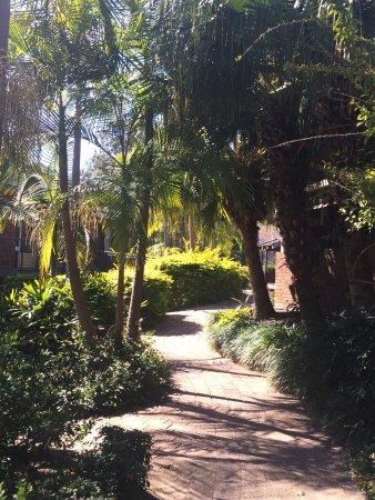 Boambee Bay Resort: Good walking areas around the resort as well.