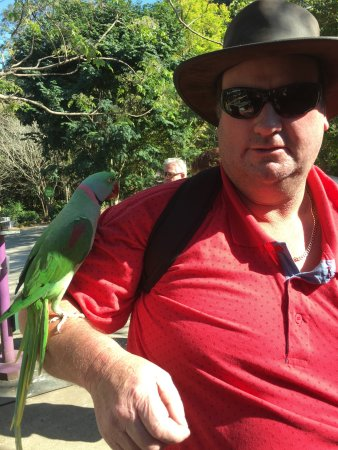 Maleny Botanic Gardens & Bird World: The bird park is a welcome addition to any visit into the hinterland. They also rescue birds. Th