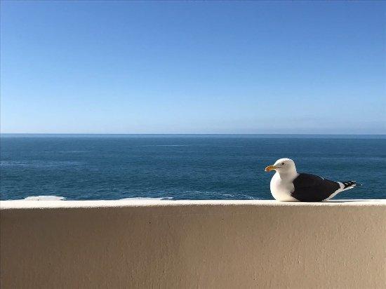 Beacon Island Resort: photo2.jpg