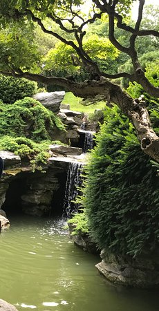 Photo of American Restaurant Brooklyn Botanic Garden at 1000 Washington Ave, Brooklyn, NY 11238, United States