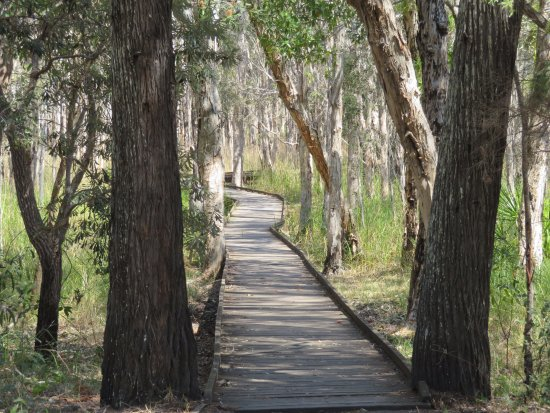 Woodgate, Australia: Banksia walkways