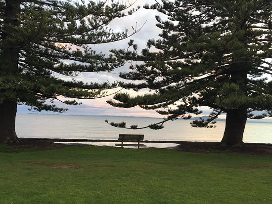 Browns Bay, New Zealand: photo2.jpg