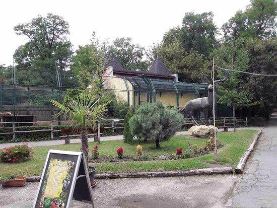 Kecskemeti Zoo