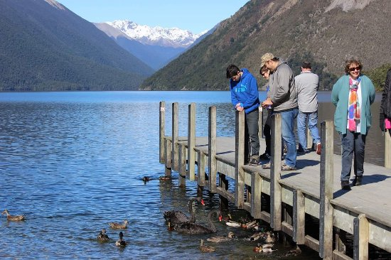 Saint Arnaud, Nouvelle-Zélande : FB_IMG_1504686235233_large.jpg