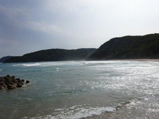 Koigaura