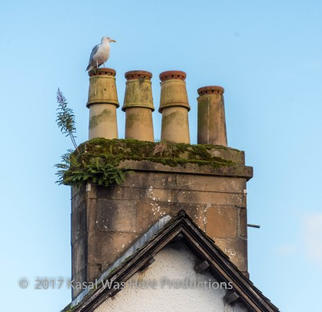 Inveraray Jail: Hanging out on the jail's chimney