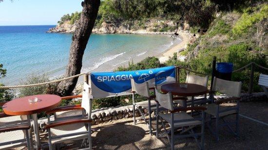 Alonissos Beach Bungalows & Suites Hotel รูปภาพ