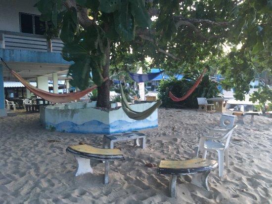 Ihasia Diving Koh Tao : photo6.jpg