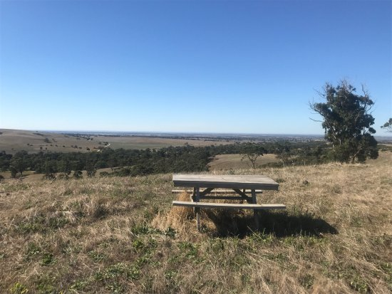 Bullock Hill Conservation Park: A wonderful place when you stop and look closely at it :)