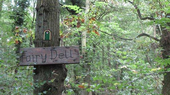 Desborough, UK: fairy dell
