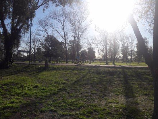 Lanus, Argentina: Verde y sol