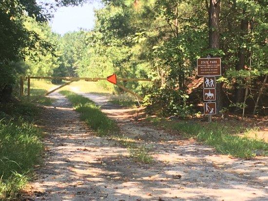 Millville, DE: Camping area road