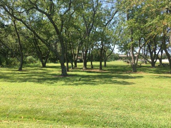 Millville, Ντέλαγουερ: Picnic area