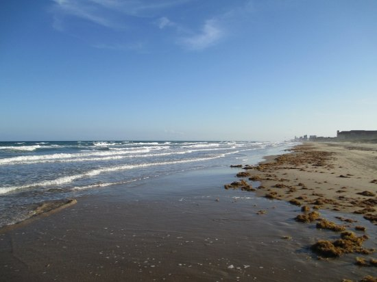 Andy Bowie Park : SPI, Texas Beach