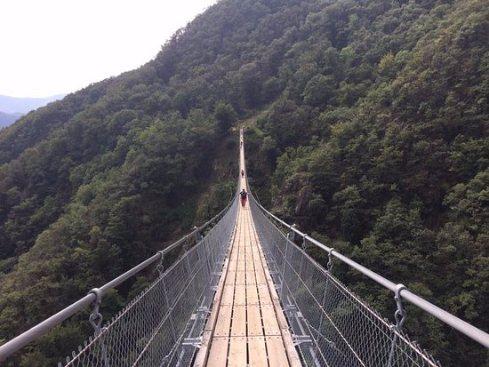 Sementina, Switzerland: Ponte Tibetano