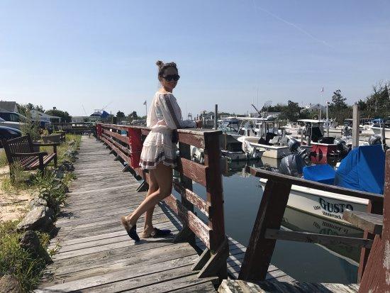 Potret Hampton Bays