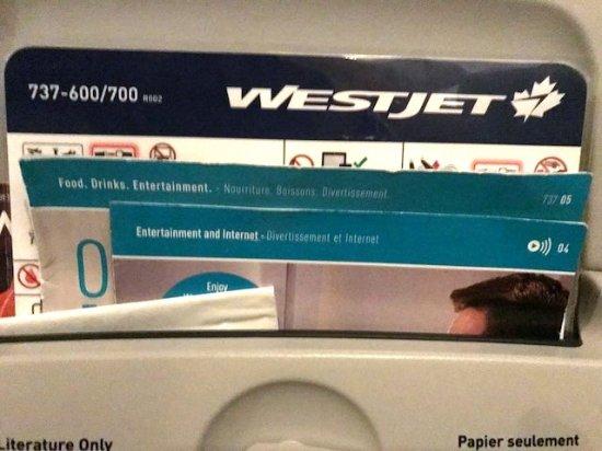 WestJet: 737-600