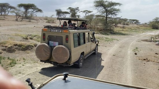 Serengeti Vacationland Safari & Kilimanjaro Treks